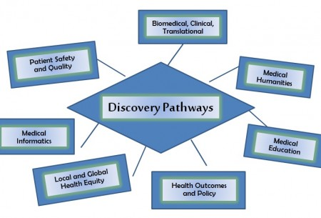 Discovery Pathways Chart
